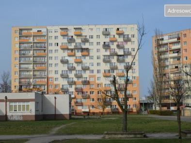 Mieszkanie 3-pokojowe Włocławek Południe