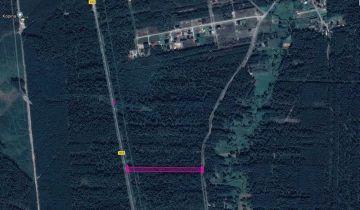 Działka leśna Nadrzecze. Zdjęcie 1