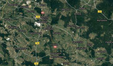 Działka rolna Brudzów. Zdjęcie 1