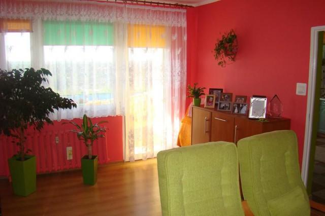 Mieszkanie 1-pokojowe Legnica, ul. Bieszczadzka