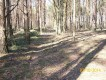 Działka leśna Wólka Radzymińska, ul. Baśniowych Dębów