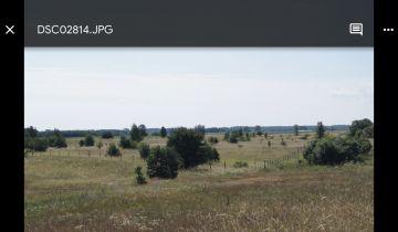 Działka rolna Kwik. Zdjęcie 4
