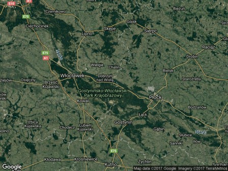 Działka siedliskowa Dąb Polski