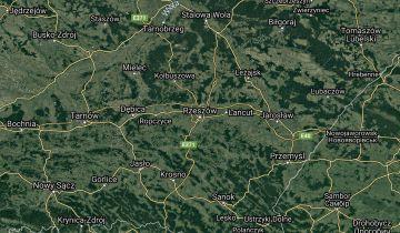 bliźniak Rzeszów. Zdjęcie 1
