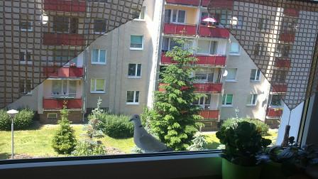 Mieszkanie 3-pokojowe Zielona Góra, ul. Osiedle Śląskie 9