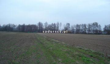Działka inwestycyjna Morawica. Zdjęcie 29