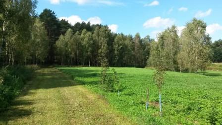 Działka rolno-budowlana Makowiska