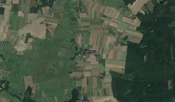 Działka siedliskowa Dargikowo. Zdjęcie 1