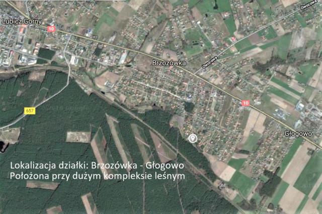 Działka rolno-budowlana Głogowo, ul. Wrzosowa 7