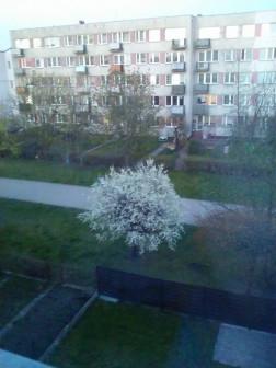 Mieszkanie 4-pokojowe Ełk, ul. Warszawska 2