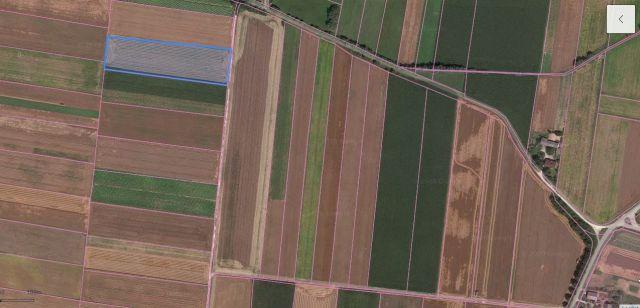 Działka rolna Charbinowice