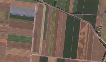 Działka rolna Charbinowice. Zdjęcie 1