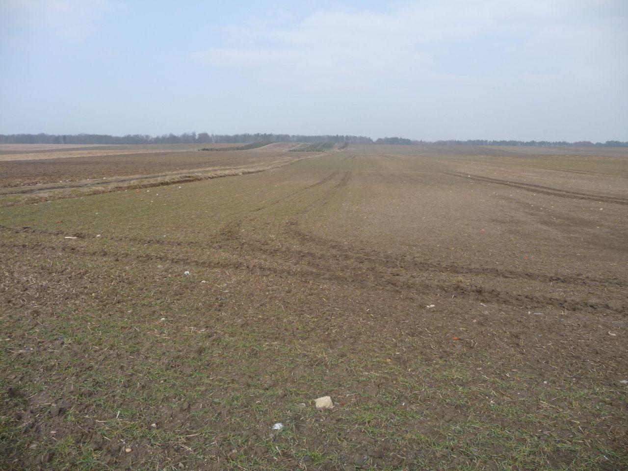 Działka rolna Włynkowo