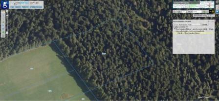 Działka leśna Mochnaczka Niżna