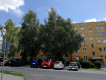 Mieszkanie 2-pokojowe Sandomierz Centrum, ul. Leona Cieśli 9