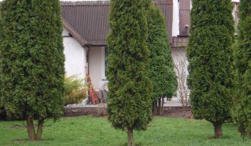 dom wolnostojący, 3 pokoje Łochowice