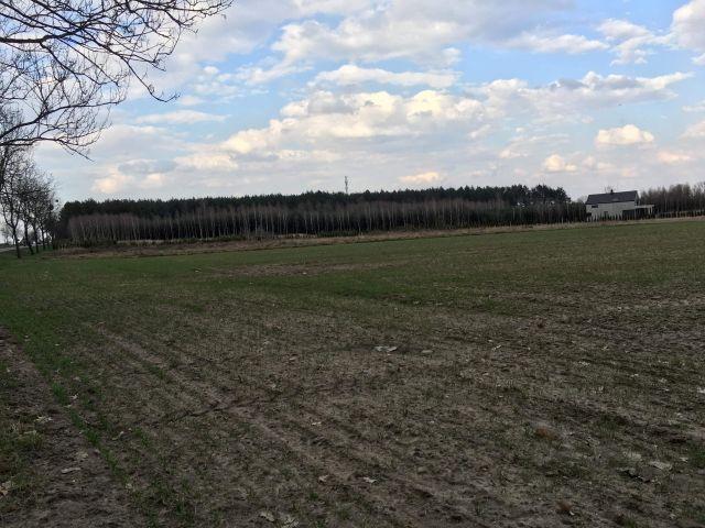 Działka rolna Dziadkowo