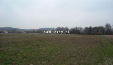 Działka inwestycyjna Morawica. Zdjęcie 27