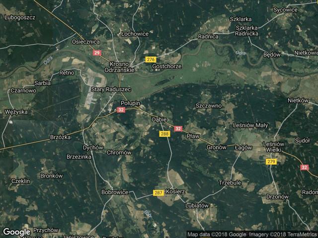 Działka leśna Dąbie