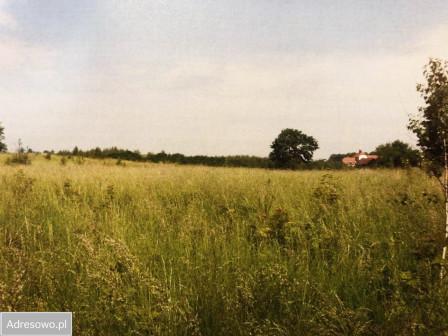 Działka rolna Olsztynek, ul. Olsztyńska