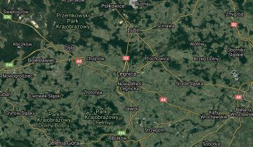Działka siedliskowa Legnica. Zdjęcie 1