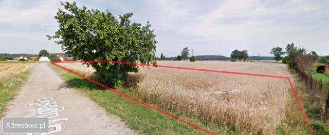Działka budowlana Kalisz Pomorski, ul. Bydgoska