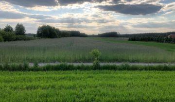 Działka rolno-budowlana Krze Duże. Zdjęcie 1
