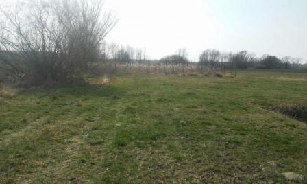 Działka rolna Jarantowiczki