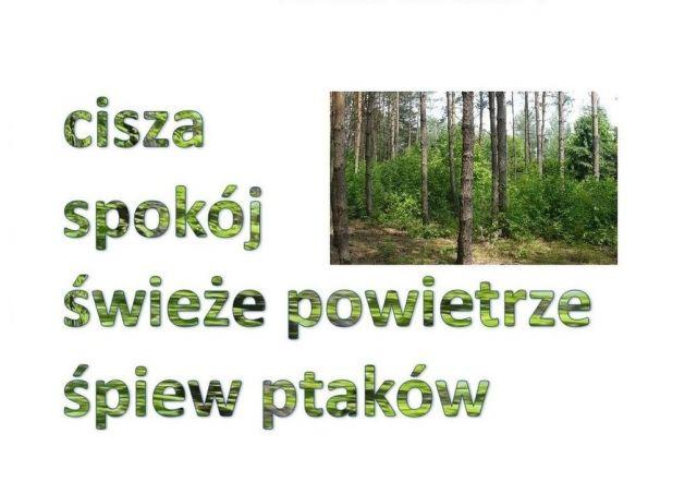 Działka budowlana Siestrzeń, ul. Boczna