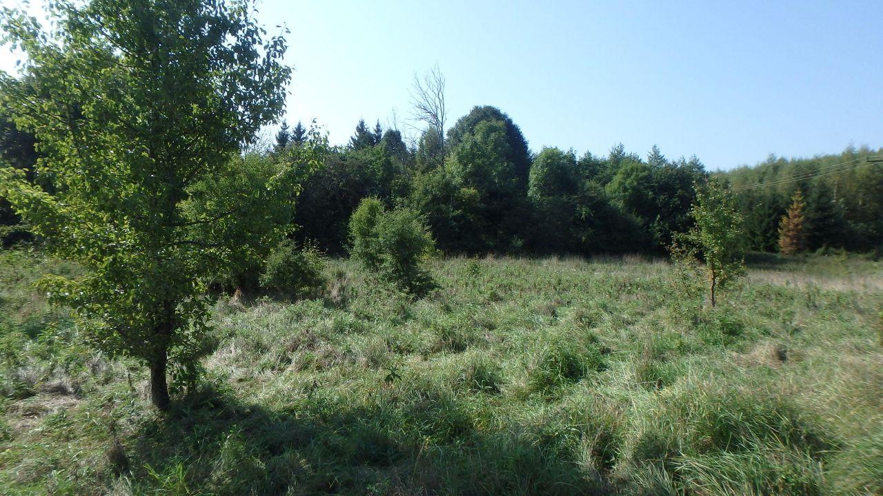 Działka rolna Mostkowo