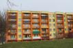 Mieszkanie 1-pokojowe Zielona Góra, ul. Aleja Wojska Polskiego 47
