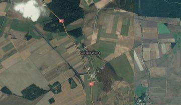 Działka rolno-budowlana Gołkowice