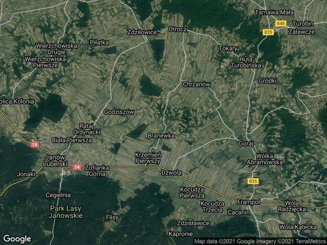 Działka leśna Branew