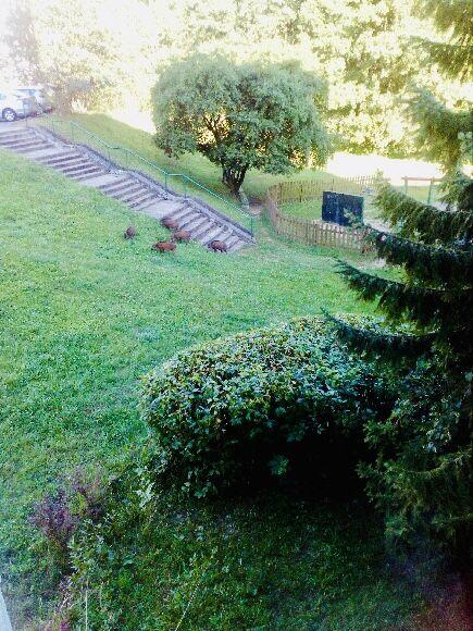 Mieszkanie 3-pokojowe Sopot Kamienny Potok, ul. Mazowiecka