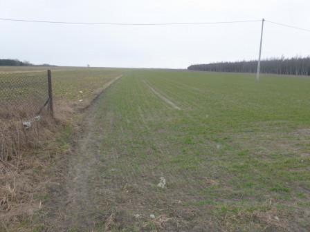 Działka rolno-budowlana Skroniów, Skroniów 133