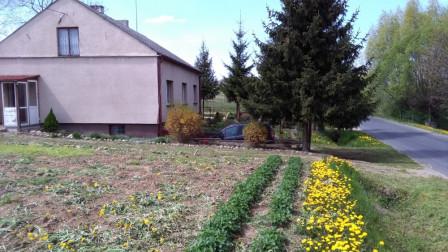 dom wolnostojący Łapinóżek
