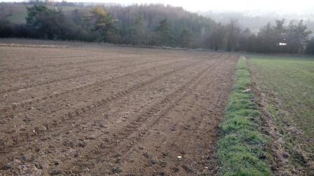 Działka rolna Wilczkowice