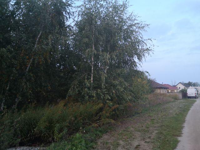 Działka budowlana Gowarzewo, ul. Parkowa
