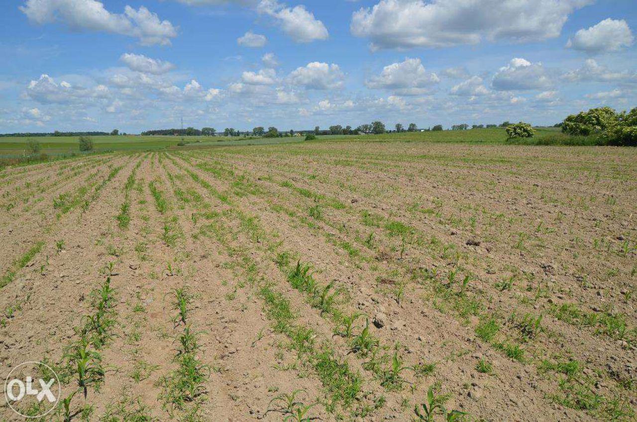 Działka rolna Gromoty