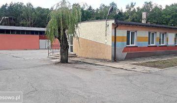 Hala/magazyn Chrzanów, ul. Powstańców Styczniowych. Zdjęcie 1