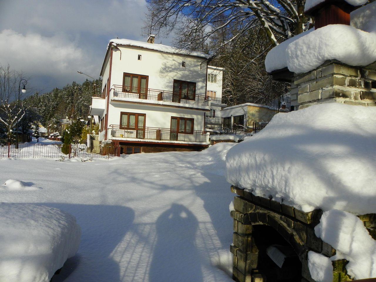 dom wolnostojący, 10 pokoi Muszyna Zazamcze, Nowa