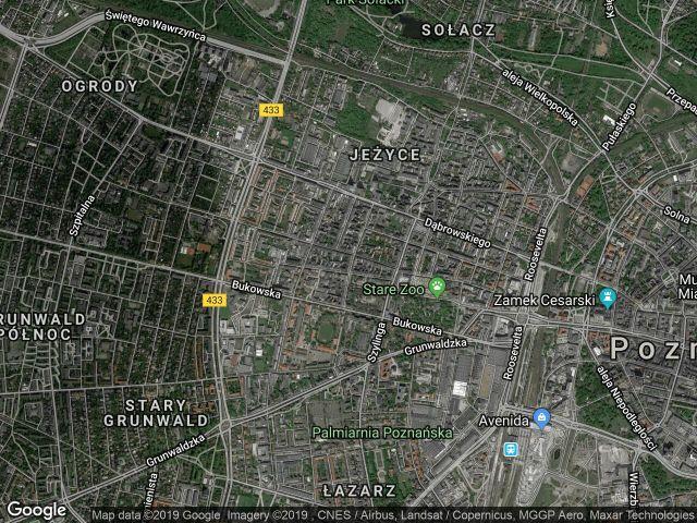 Mieszkanie 1-pokojowe Poznań Jeżyce, ul. Piotra Wawrzyniaka 29