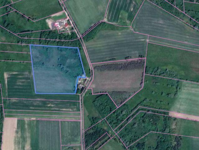 Działka rolna Rościno