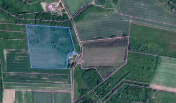 Działka rolna Rościno. Zdjęcie 1
