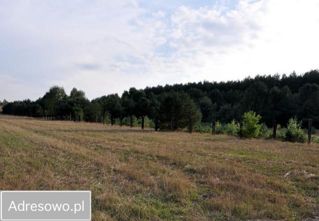 Działka budowlana Huta Dłutowska
