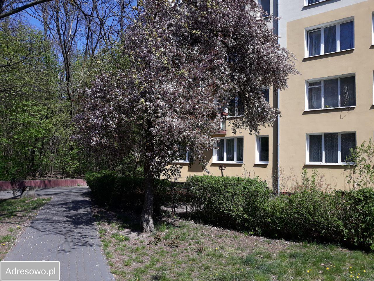 Mieszkanie 1-pokojowe Warszawa Marysin Wawerski, ul. Korkowa