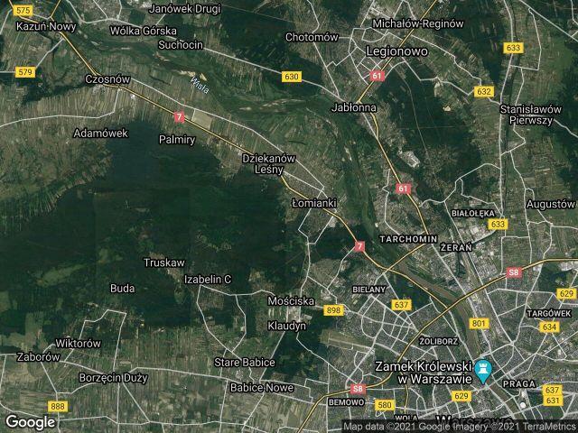Działka leśna Dąbrowa