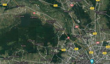 Działka leśna Dąbrowa. Zdjęcie 1