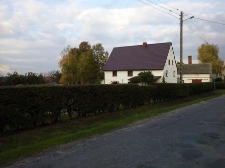 dom wolnostojący, 5 pokoi Dobroszów