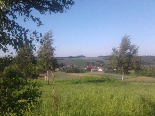 Działka rolno-budowlana Sokolniki
